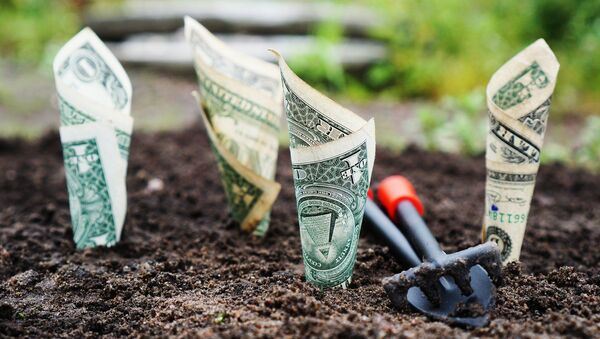 Dinero enterrado (imagen referencial) - Sputnik Mundo
