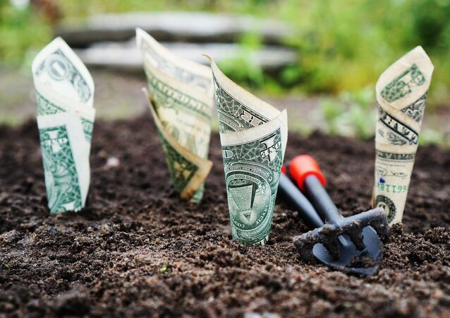 Dinero enterrado (imagen referencial)