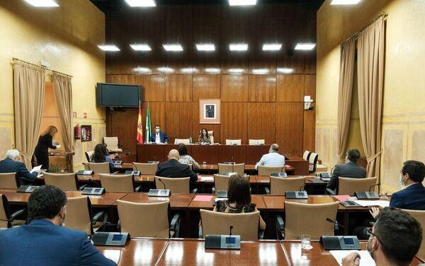 La Comisión de Estudio sobre recuperación económica y social de Andalucía a causa de la pandemia del COVID-19 en su sesión constitutiva - Sputnik Mundo
