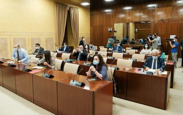 Los diputados de la Comisión de Estudio sobre recuperación económica y social motivada por la pandemia, al inicio de la sesión - Sputnik Mundo