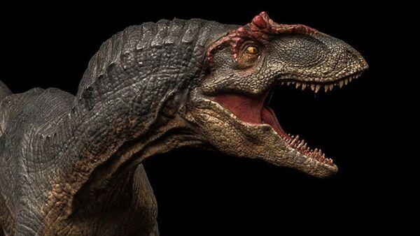 La maqueta de un Allosaurus - Sputnik Mundo