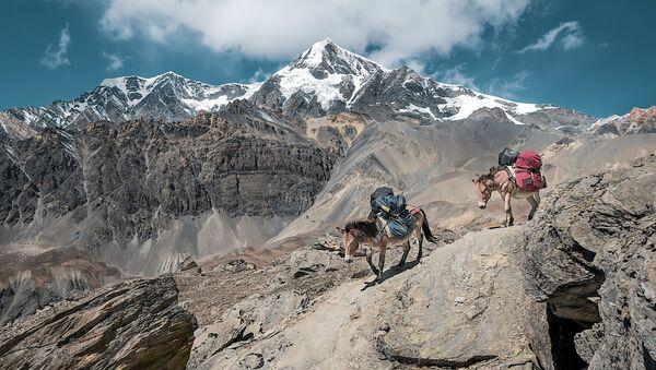 Montañas del Himalaya - Sputnik Mundo