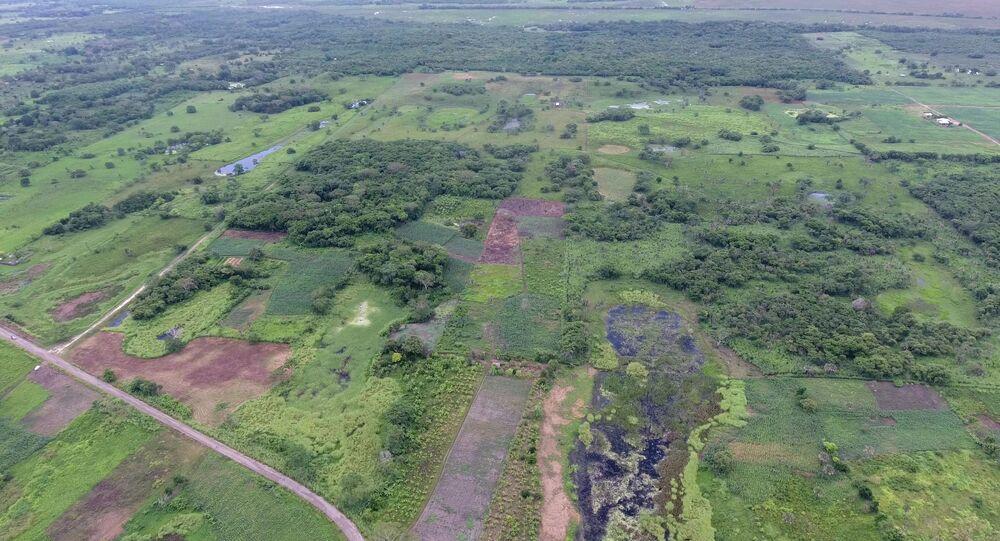 Una vista aérea del antiguo sitio maya en Aguada Fénix en México