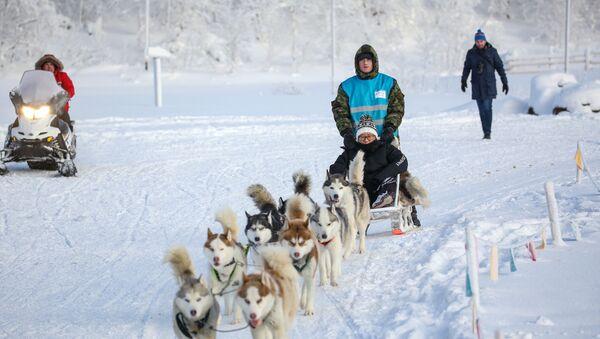 Turistas chinos en el Ártico ruso - Sputnik Mundo