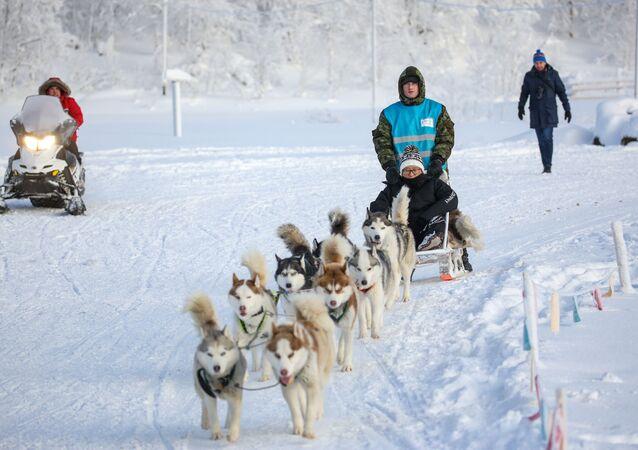 Turistas chinos en el Ártico ruso