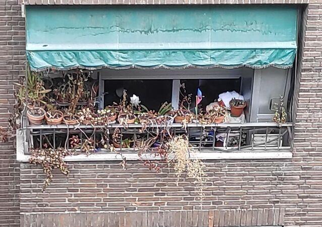Balcón con macetas secas
