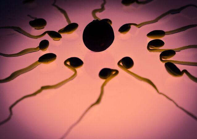 Unos espermatozoides con un óvulo