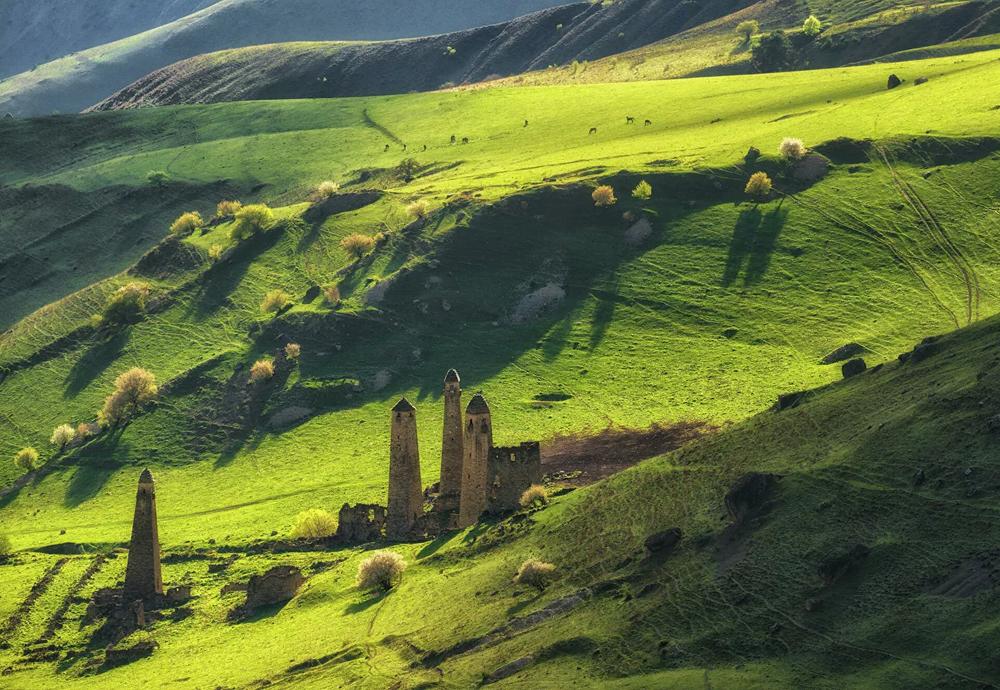 El antiguo complejo de torres conocido como Ni es una de las principales atracciones de Ingushetia. La cuestión de la edad exacta de las estructuras sigue abierta para los historiadores. Podrían haber sido construidas de los siglos XIII y XIV o XVI y XVII. Se sabe que estas construcciones cumplían funciones de vivienda, defensa, señalización y vigilancia.