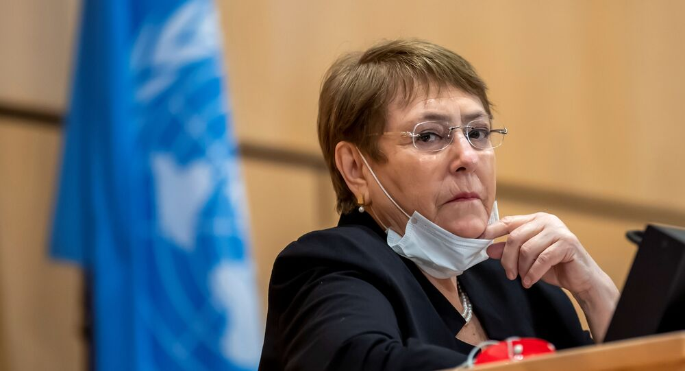 Por situación de presos mapuche: increpan a Bachelet mientras caminaba por Ginebra