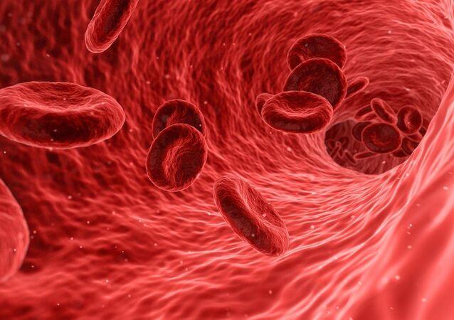 Flujo sanguíneo