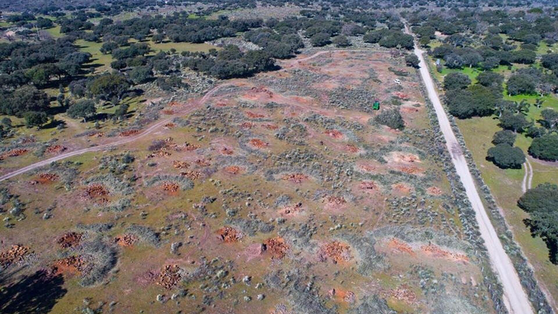 Campo donde se ha proyectado la mina de uranio en Retortillo, un pueblo de España - Sputnik Mundo, 1920, 13.07.2021
