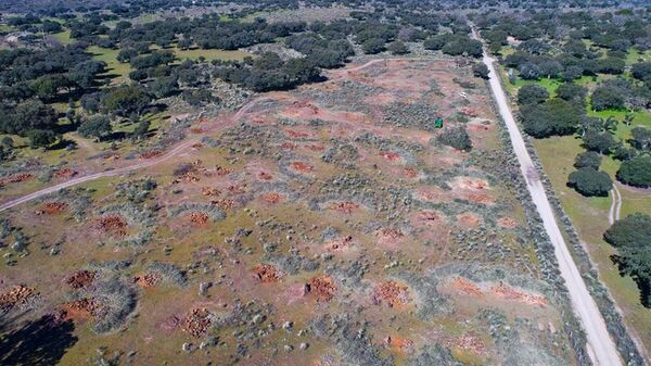 Campo donde se ha proyectado la mina de uranio en Retortillo, un pueblo de España - Sputnik Mundo