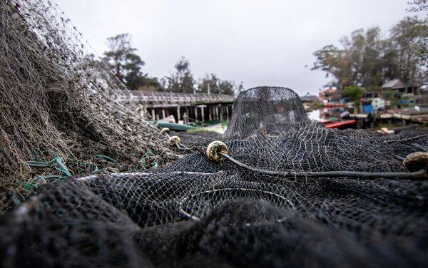 Redes que utilizan los pescadores de Barra de Valizas, Rocha, Uruguay - Sputnik Mundo