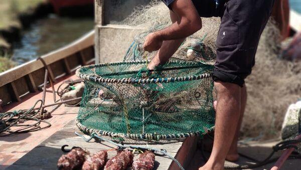 Jaula circular lista para salir a pescar en Barra de Valizas con los pescadores artesanales, Rocha, Uruguay - Sputnik Mundo