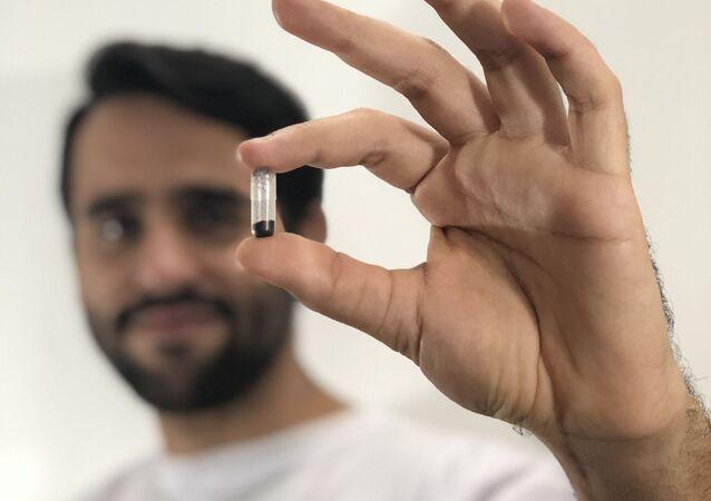 Mini cápsula con huevos de mosquitos transgénicos de Oxitec