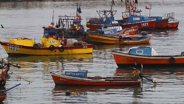 Pesca artesanal en Chile - Sputnik Mundo