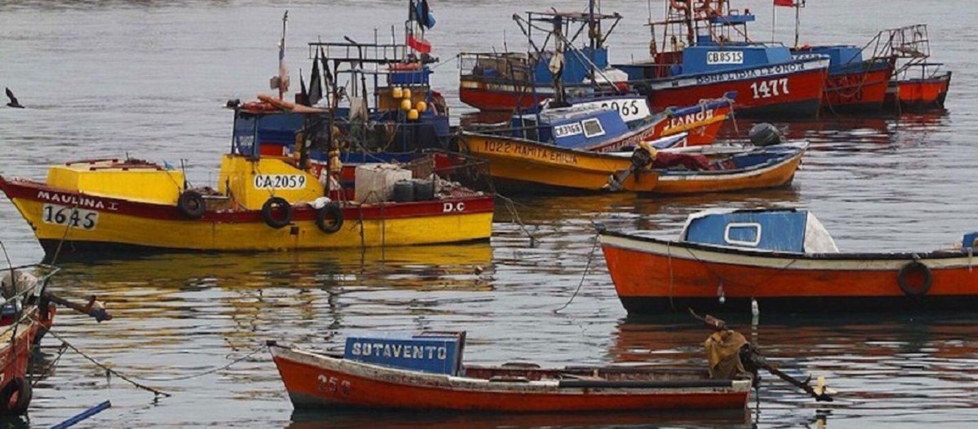 Pesca artesanal en Chile - Sputnik Mundo, 1920, 06.07.2020