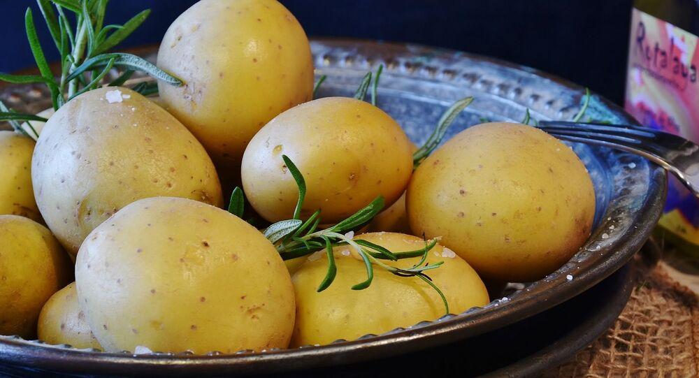 Patatas, imagen referencial