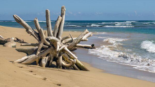 Una playa en el Caribe - Sputnik Mundo