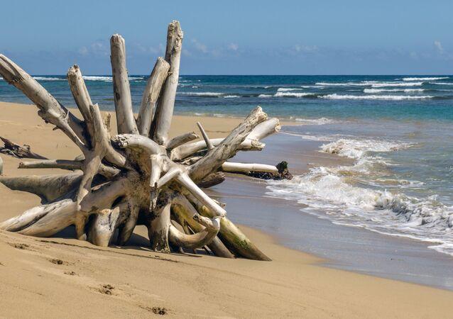 Una playa en el Caribe