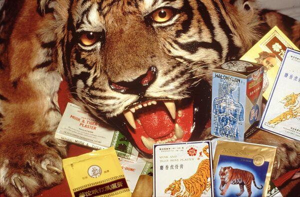 """Pieles, """"remedios milagrosos"""" y amuletos. ¿Por qué exterminan a los tigres? - Sputnik Mundo"""