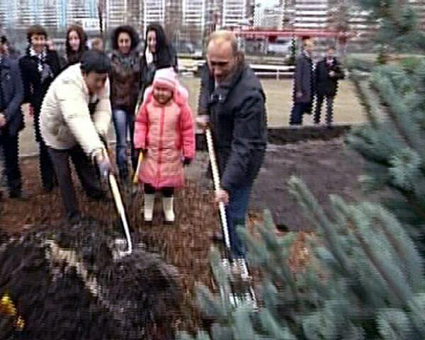 Putin planta el Árbol de Año Nuevo en centro para niños enfermos de cáncer - Sputnik Mundo