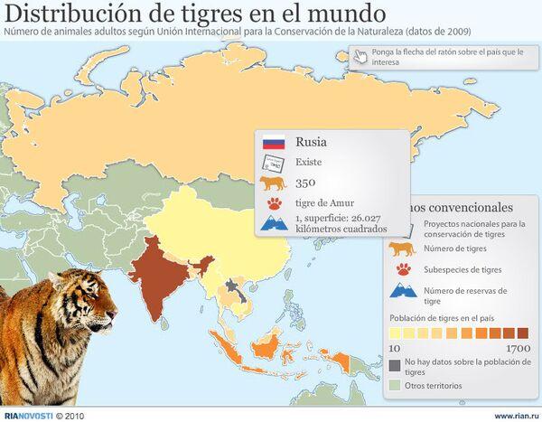 Distribución de tigres en el mundo - Sputnik Mundo