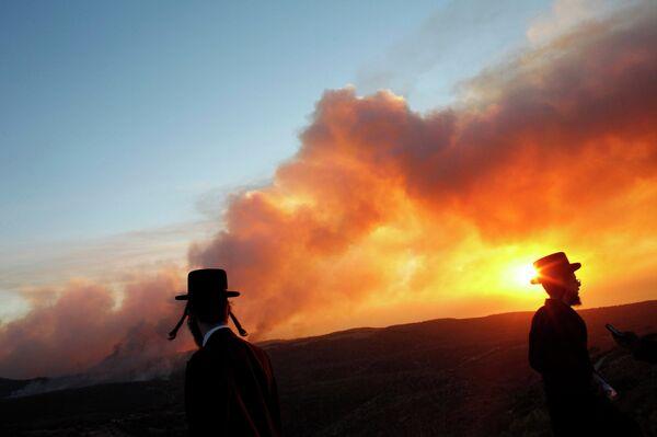 Incendios forestales en Israel - Sputnik Mundo