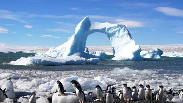 Antártida (archivo) - Sputnik Mundo