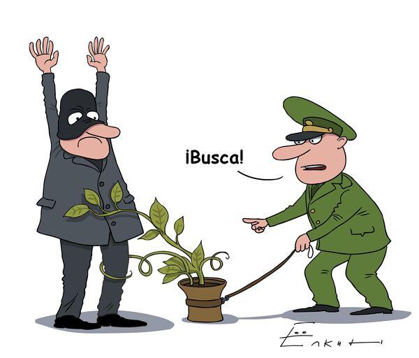 Plantas antiterroristas    - Sputnik Mundo