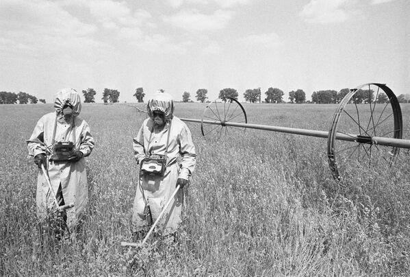 Singulares testimonios gráficos del accidente de Chernóbil - Sputnik Mundo