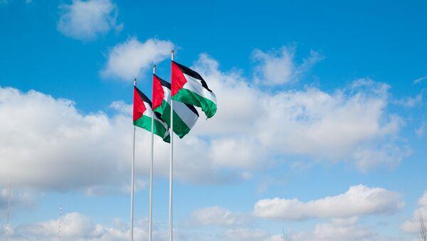 EEUU no apoyará la resolución palestina a la ONU para poner fecha al final de la ocupación - Sputnik Mundo