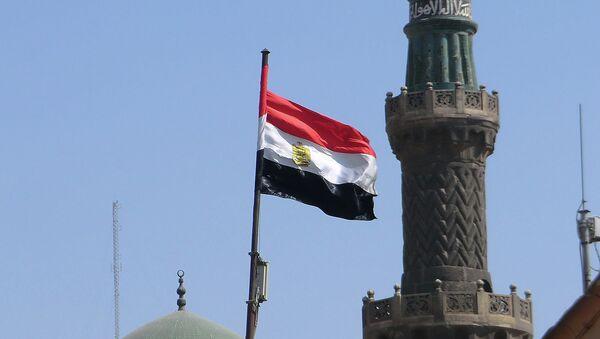 Egipto aumenta suministros de verduras y frutas a Rusia - Sputnik Mundo