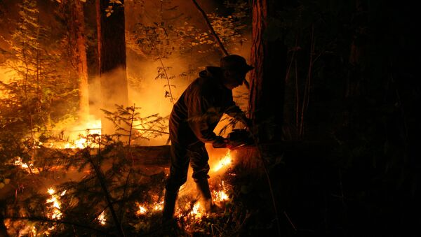 Incendios forestales en Siberia (archivo) - Sputnik Mundo