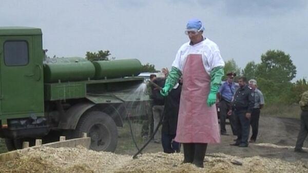 Veterinarios desinfectan poblado de Siberia afectado por brote de carbunco - Sputnik Mundo
