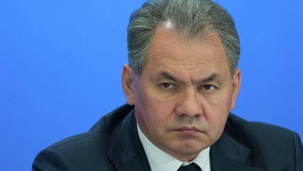 El ministro de Defensa ruso, Serguei Shoigu - Sputnik Mundo