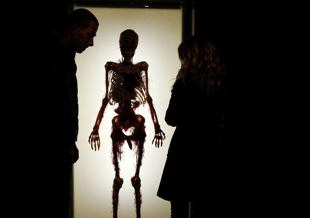Un esqueleto