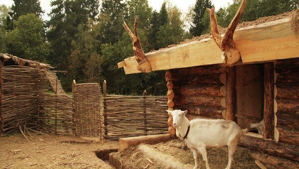 Una cabra en una casa de campo - Sputnik Mundo