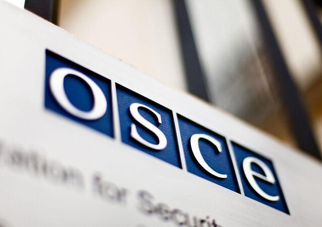 Organización para la Seguridad y la Cooperación en Europa