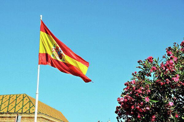 Un senador del PSOE opina que es inoportuno abordar la jefatura de Estado - Sputnik Mundo