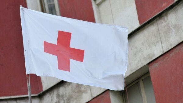Cruz Roja rusa - Sputnik Mundo