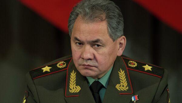 Serguéi Shoigú, el ministro de Defensa de Rusia - Sputnik Mundo