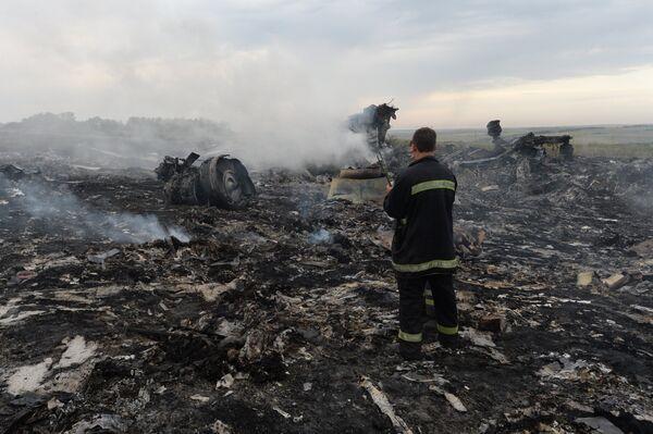 Los restos del avión malasio accidentado en el este de Ucrania - Sputnik Mundo