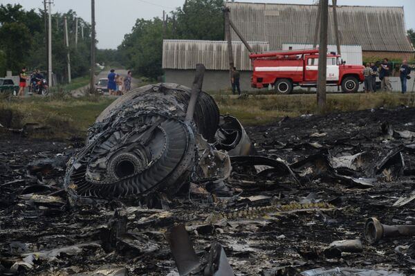 Experto ucraniano no ve pruebas convincentes de que el Boeing malasio fuera derribado - Sputnik Mundo