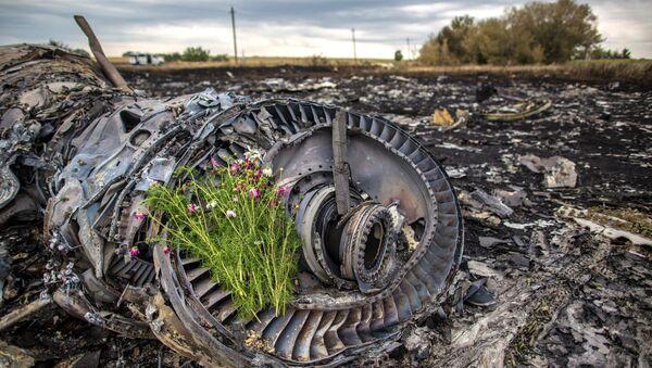 Lugar de la catástrofe del vuelo de MH17 en Ucrania (Archivo) - Sputnik Mundo