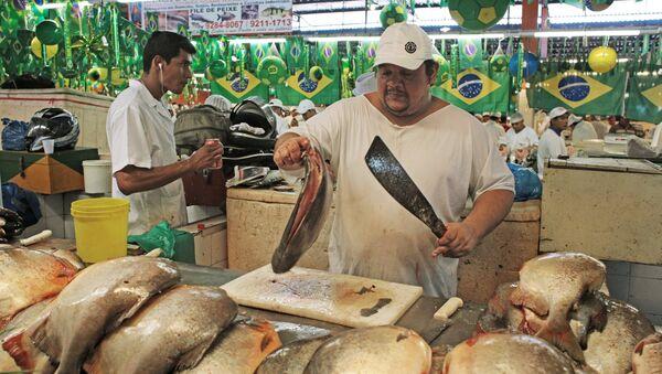 Rusia empezará a importar queso y pescado de Brasil - Sputnik Mundo