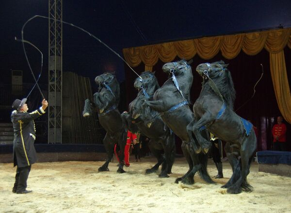 El circo ruso planea visitar más América Latina - Sputnik Mundo