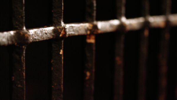 Rejas de la cárcel - Sputnik Mundo