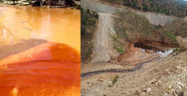 El Congreso de México pide suspender una mina de cobre por contaminar un río - Sputnik Mundo