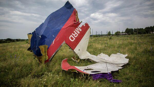 Los restos del Boeing 777 malasio derribado en Donbás - Sputnik Mundo